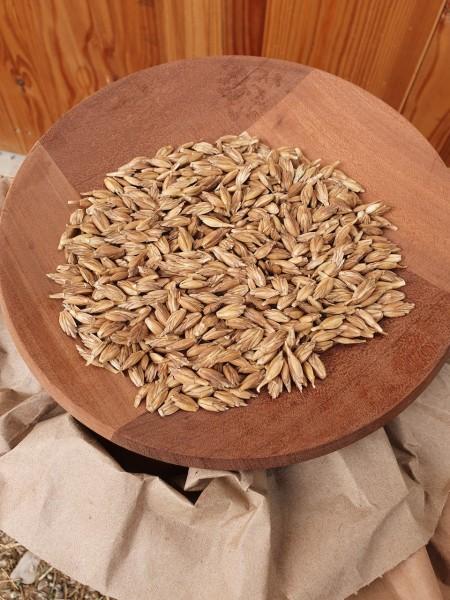 Bio Dinkel im Spelz 20kg in einer Holzschale