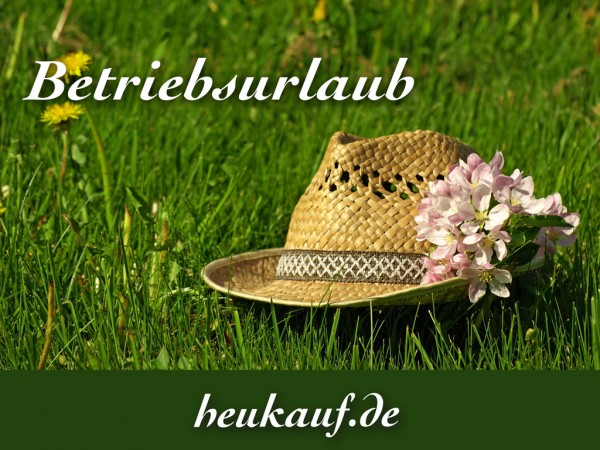 news-betriebsurlaub-2018
